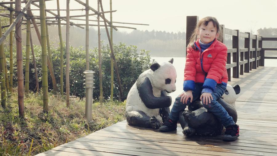 王近悦-小悦悦-大熊猫-太湖湿地公园-20170226-004